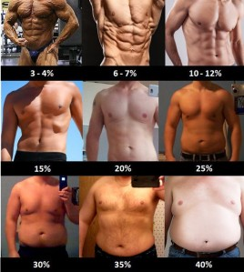 Body Fat % Chart for Men